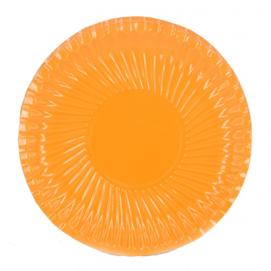 10 kartonnen bordjes oranje 18 cm