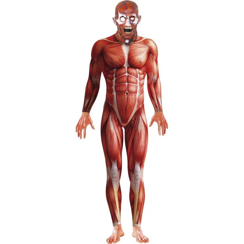 Anatomische man kostuum