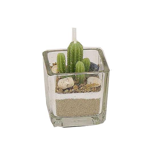 Cactus kaarsjes 5 cm