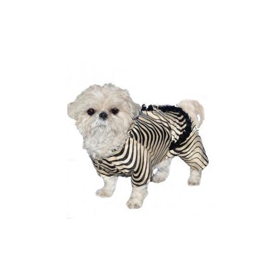 Honden outfit zebra jasje