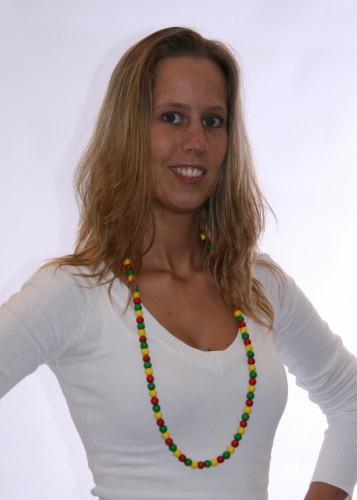 Kleuren van Litouwen kralenketting