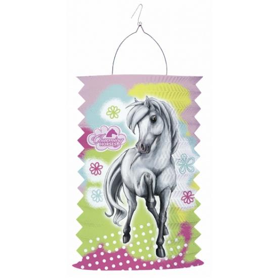 Paard lampion langwerpig 30 cm