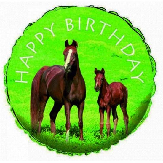 Paarden folieballon 45 cm