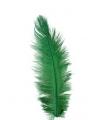 Groene zwarte piet struisveer 35 cm