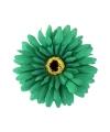 Haarbloem gerbera groen