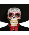 Halloween doodshoofd masker met spinnenweb