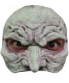 Halloween heksen masker half gezicht