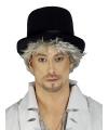 Halloween hoge zwarte hoed