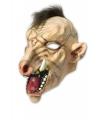 Halloween horror masker zwijn