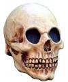 Halloween luxe schedel masker