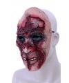 Halloween rottend gezicht masker