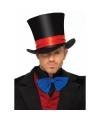 Luxe hoge fluwelen hoed voor volwassenen