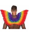 Regenboog veren vleugels 80 cm