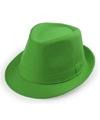 Groen trilby verkleed hoedje voor volwassenen