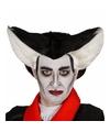 Halloween puntige vampierenpruik voor heren